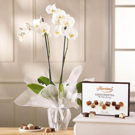 White Orchid and Continental Chocolate Box