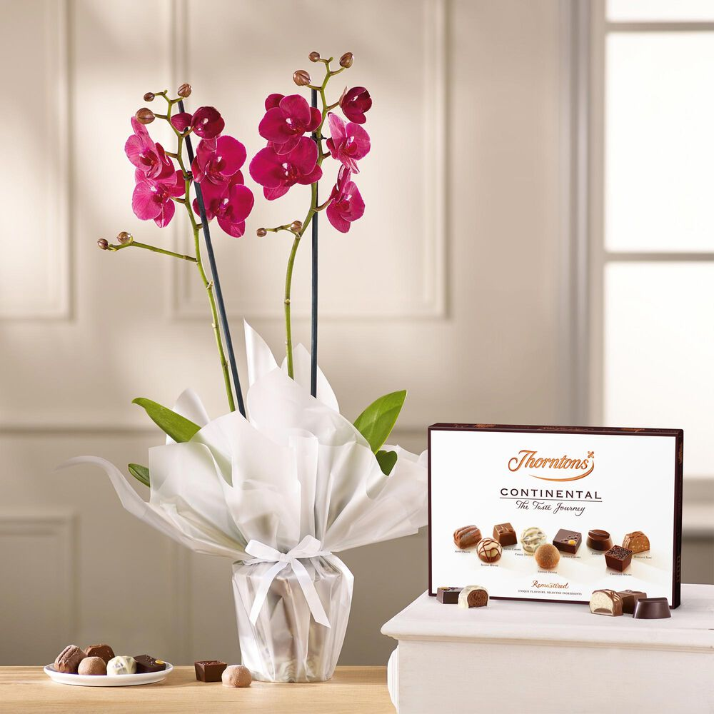 Pink Orchid and Continental Chocolate Box