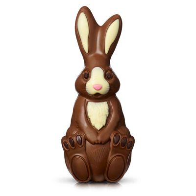 Milk Chocolate Bunny Model desktop