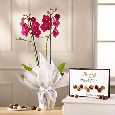 Pink Orchid and Continental Chocolate Box desktop