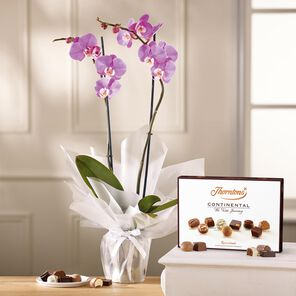 Lilac Orchid and Continental Chocolate Box tablet